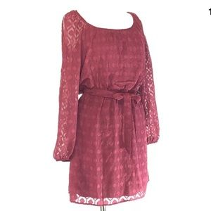 Accidentally in Love cranberry flirty dress